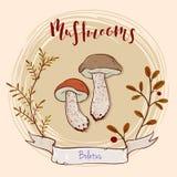 Projeto do cogumelo Fotografia de Stock