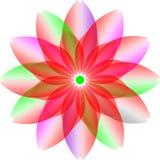 Projeto do colourfull do logotipo, flor da transparência flor da flor do colourfull ilustração do vetor