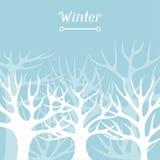 Projeto do fundo do inverno com o sumário estilizado Foto de Stock