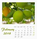 Projeto 2018 do inseto do molde do calendário de mesa de julho valença Fotos de Stock
