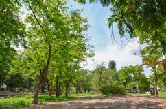 Projeto do jardim Jardim formal Mola no jardim Fotografia de Stock Royalty Free
