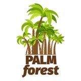 Projeto do logotipo da floresta da palma ilustração stock