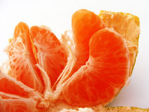 Projeto do logotipo e de empacotamento dos mandarino apropriados para o projeto da tampa Fotografia de Stock