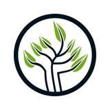 Projeto do logotipo para a árvore ilustração stock