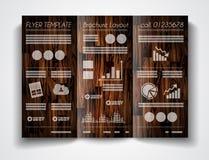Projeto do molde do folheto do vetor ou disposição dobrável em três partes do inseto Fotografia de Stock Royalty Free