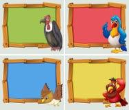 Projeto do quadro e pássaros selvagens Imagens de Stock