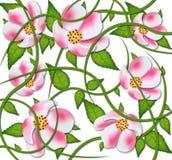 Projeto do TESTE PADRÃO de flores do vetor fotografia de stock