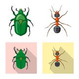 Projeto do vetor do s?mbolo do inseto e da mosca Cole??o do ?cone do vetor do inseto e do elemento para o estoque ilustração do vetor