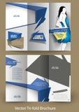 Projeto dobrável em três partes do folheto da forma Fotos de Stock