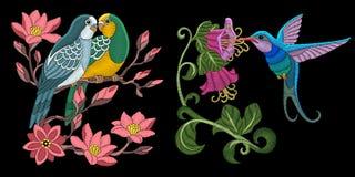 Projeto dos pássaros do bordado ilustração royalty free