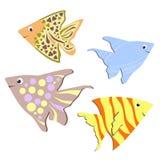 Projeto dos peixes da cor Foto de Stock