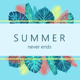 Projeto exótico e tropico do verão do fundo Fotografia de Stock Royalty Free