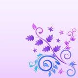Projeto floral Imagens de Stock