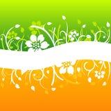 Projeto floral branco curvado ilustração stock