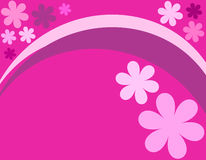 Projeto floral cor-de-rosa Imagens de Stock Royalty Free