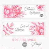Projeto floral das bandeiras do vintage do vetor botanical ilustração stock