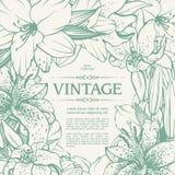 Projeto floral do fundo do quadro decorativo do vintage Imagens de Stock Royalty Free