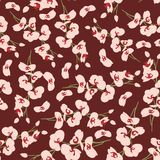 Projeto floral do teste padrão do fundo Fotos de Stock Royalty Free