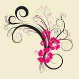 Projeto floral do vetor Imagens de Stock