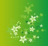 projeto floral do vetor. ilustração do vetor