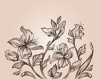 Projeto floral moderno Foto de Stock Royalty Free