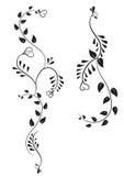Projeto floral preto do tatuagem Fotos de Stock