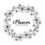 Projeto floral preto e branco Foto de Stock