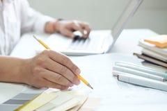 Projeto gráfico e amostras de folha e penas da cor em uma mesa Architectu Imagem de Stock