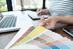 Projeto gráfico e amostras de folha e penas da cor em uma mesa Architectu Imagem de Stock Royalty Free