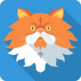 Projeto liso do ícone do gato persa do vetor Foto de Stock Royalty Free