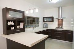 Projeto luxuoso da cozinha Imagem de Stock