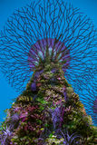Projeto moderno da árvore de Supergrove do Avatar Imagem de Stock