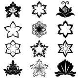 Projeto preto e branco da flor Foto de Stock