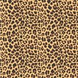 Projeto sem emenda do teste padrão do leopardo, ilustração stock
