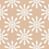 Projeto sem emenda floral branco no fundo bege Imagens de Stock
