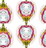 Projeto sem emenda incomum brilhante gráfico tirado mão do teste padrão do sumário do vetor com fruto ou o pitaya tropical exótic ilustração stock