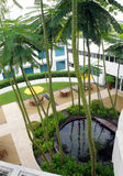 Projeto superior do jardim do telhado foto de stock royalty free