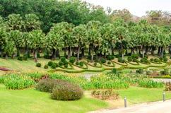 Projeto tropical bonito do jardim em Tailândia Fotografia de Stock Royalty Free