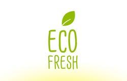 projeto verde fresco do ícone do logotipo do conceito do texto da folha do eco Imagem de Stock Royalty Free