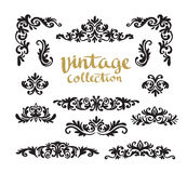 Projetos caligráficos decorativos do vintage ajustados Fotos de Stock Royalty Free