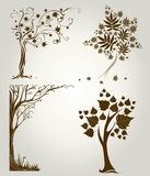 Projetos com a árvore decorativa das folhas Imagens de Stock Royalty Free