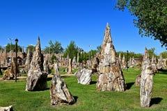 Projetos de madeira hirtos de medo da arquitetura em um parque Fotografia de Stock Royalty Free