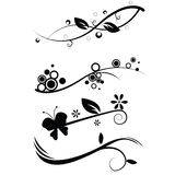 Projetos florais Foto de Stock Royalty Free