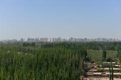 Projetos greening de KeKeYa Imagem de Stock