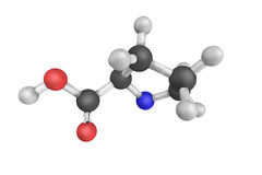 Proline, een alpha--aminozuur dat in de biosynthese van wordt gebruikt royalty-vrije stock afbeeldingen