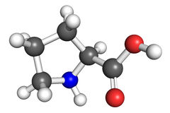 Proline molecule. Proline (amino acid) molecule, ball and stick model. Atoms colored according to convention Stock Photos