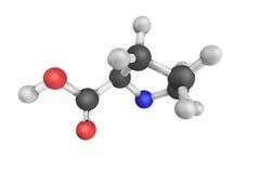 Proline, un acide alpha-aminé dont est employé dans la biosynthèse images libres de droits