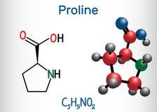 Proline proline van L, Pro, proteinogenic het aminozuurmolecule van P Structureel chemisch formule en moleculemodel stock illustratie