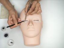 Prolongements de cil de formation Travail sur des cils de coloration sur un mannequin photo libre de droits