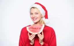 Prolongue o verão Férias do Natal do curso e recurso de feriados Conceito tropical do Natal Destinos do verão do Natal imagens de stock